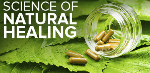 Best Herbs And Spices For Natural Healing